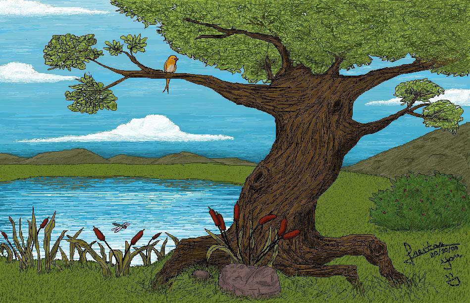 Landscape - Bryan Freitas